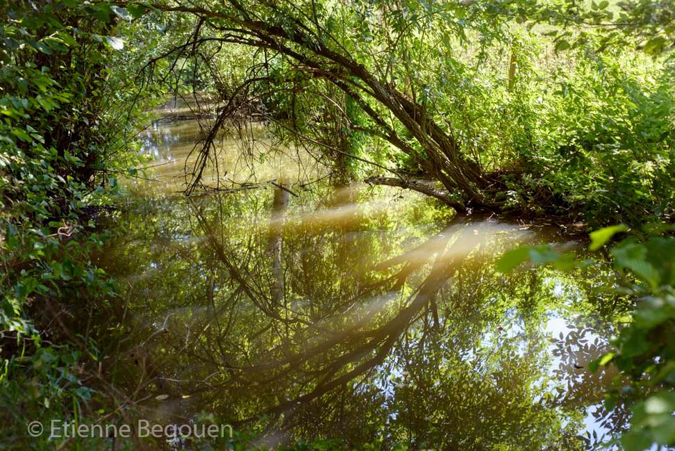 DEP49_Valleedel'Hyrome_©Begouen-21.jpg