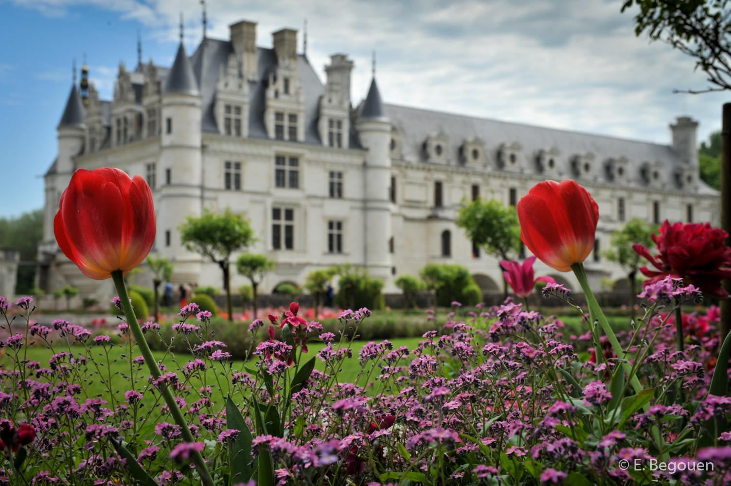 Chateau de Chenonceaux01