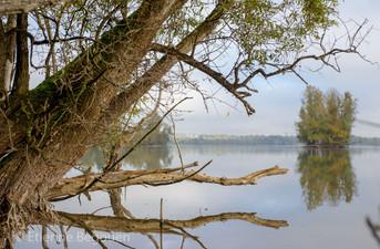 Lac de Maine-4.jpg