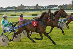 Courses Deauville2