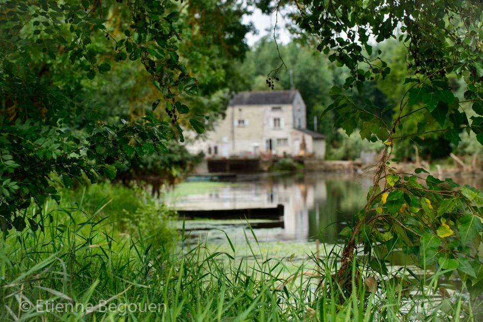 DEP49_ValleeduThouet-Marais_de_Distre_©B
