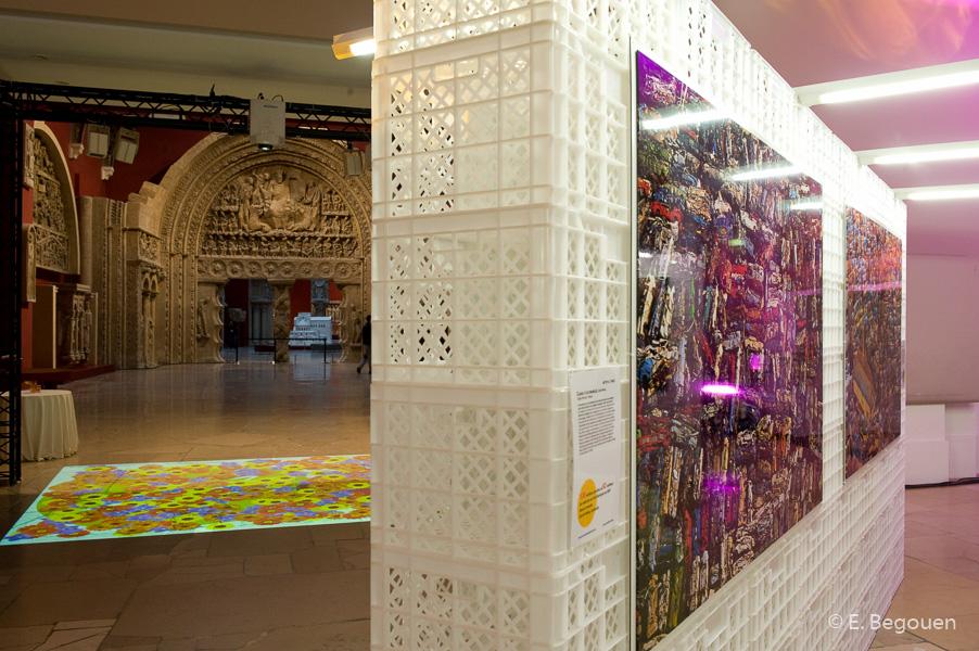 Exposition_Y.A._Bertrand_-_Cité_de_l'Architecture
