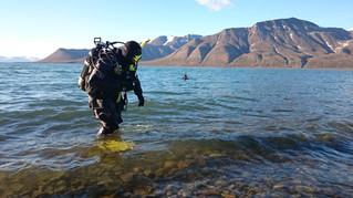 Diving at Hotellneset