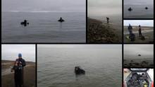 Diving action at Vestpynten kelpforest