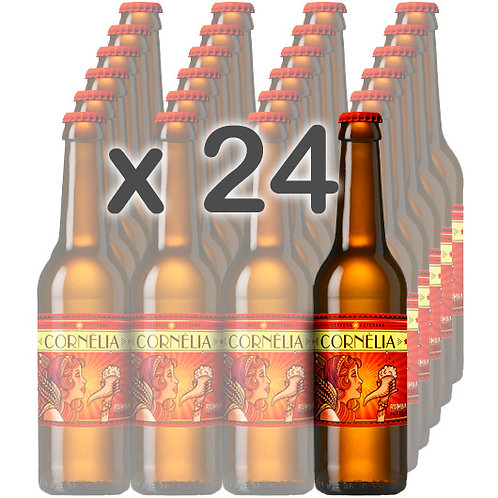 CAIXA x 24 - RUMBA (Pale Ale) 33cl.