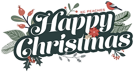 Happy christmas banner 2021.png