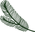 KCP christmas icon 32.png