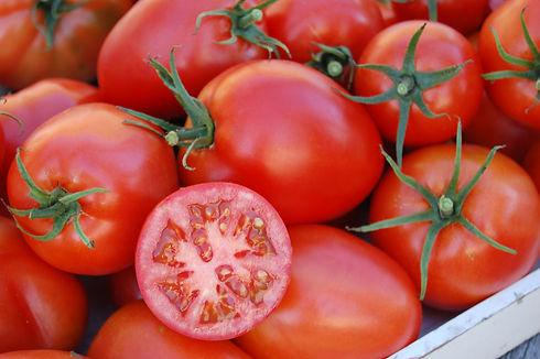 Tomato_Amish_Paste_Vegetable_27249.JPG