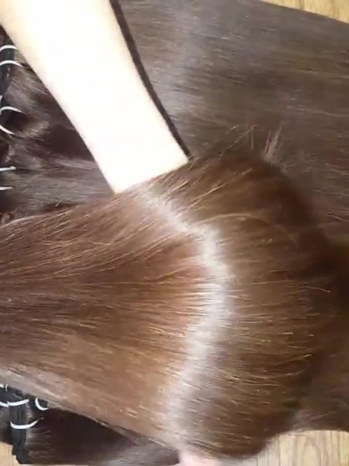 Raw Vietnamese  Straight Hair Weft
