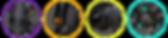 Color-Circles-Pro-Series-header-3.png