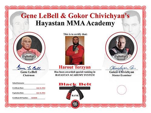 Hayastan MMA Certificate