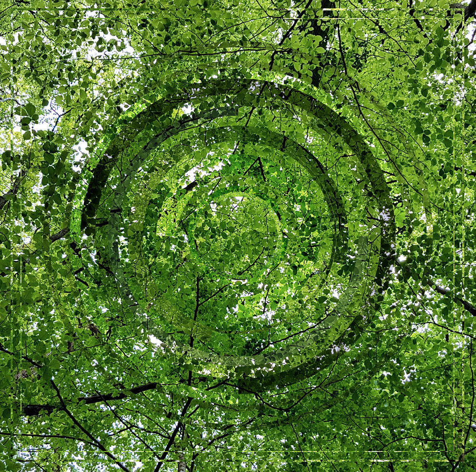 GreenSky.jpg