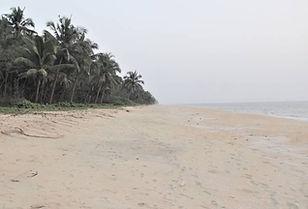Valiyaparamba beach