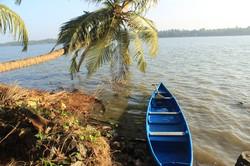 Go Canoe