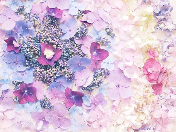 flowermandara01.jpg