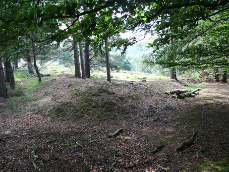 Exciting discoveries at Old Lodge, Ashdown Forest, West Sussex.
