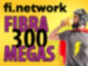 FIBRA 300.png