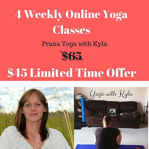 1 Month Online Yoga Class Package (April)