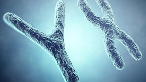 Otros tests de ADN