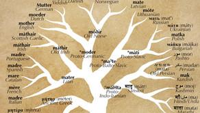 Lenguas y genealogía