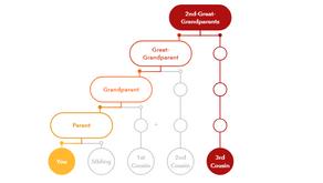 Buscando padres biológicos con ADN y Genealogía