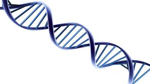 ADN y genealogía
