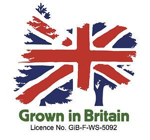 GiB Licence Logo Website.jpg