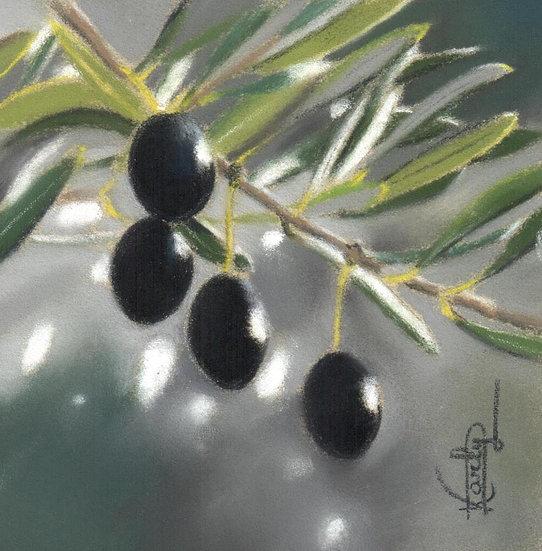 Le pouvoir magique de l'olive