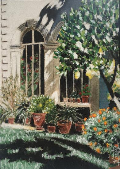 Colias l'Orangerie