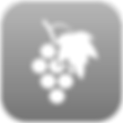 Logo VinsLux App HR Kopie_bearbeitet.png