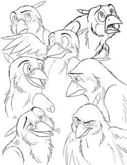 Sparrow Sketches