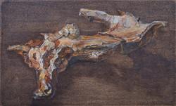 Salix II (wilg)  15x24,5 cm
