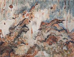 Betula II (berk)  13x17 cm