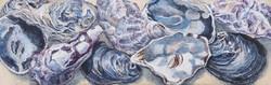 Ostrea II (oesters)  9.5 x 30 cm