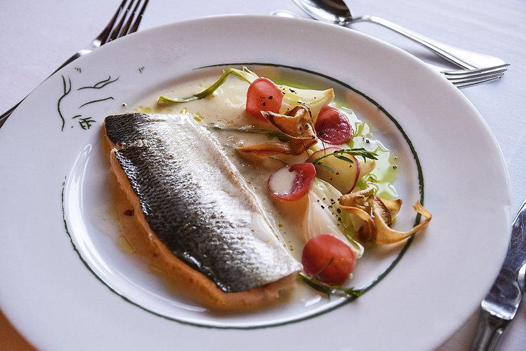 Fisch-Koller.jpg