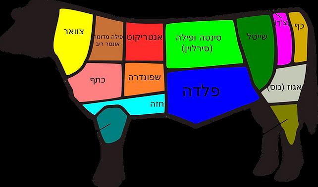 חלקי הפרה, מספר חלק פרה, שפוונדרה כתף אסאדו