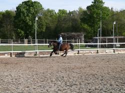 rodeo2_WEB