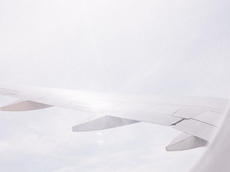 Google flights: el cazador de vuelos