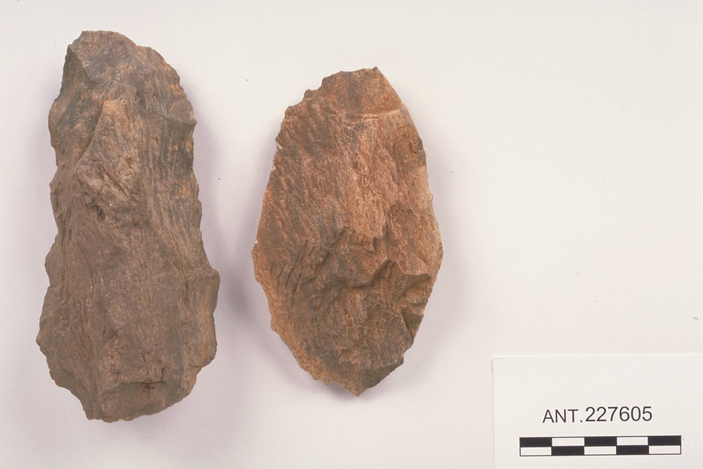 Petrified Wood Tools found in Venezuela, South America