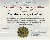 Senate Award.PNG