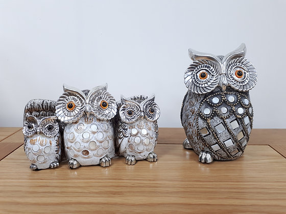 Owls - grey/silver with shell