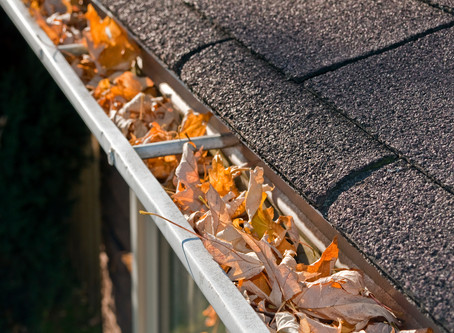 Cleaning Your Gutters Before Winter