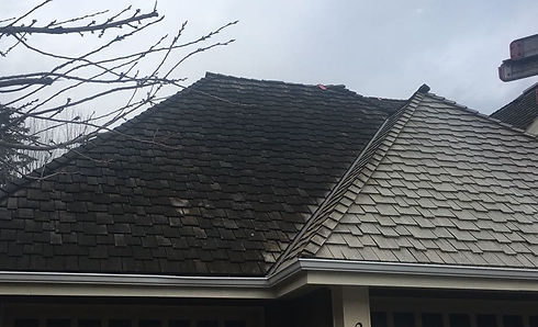 Xcelcor Exterior Cleaning Lower Mainland Amp Vancouver