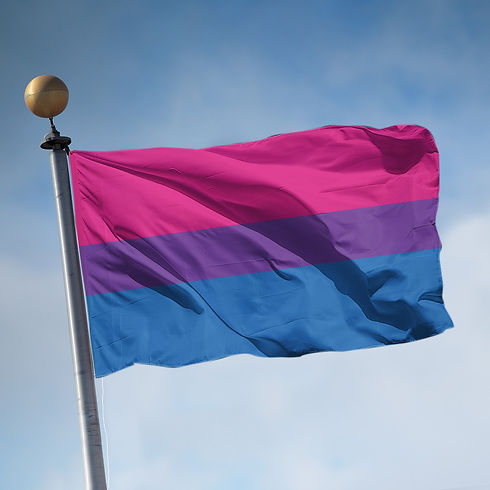 flag_large_bisexual_ab663349-c4f5-4f2c-b