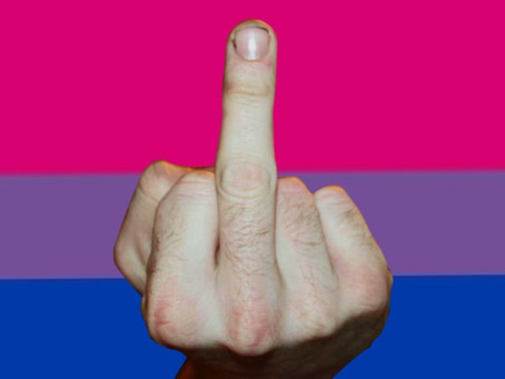 História da nossa bandeira bissexual