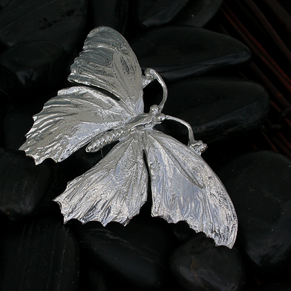 Window Butterfly Ornament Copyright by Mayrice Milleur