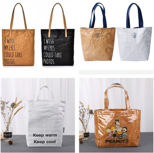 Biodegradable, recycled bag.png