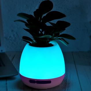 Music flower pot+ lamp