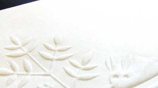 Speical paper embossing