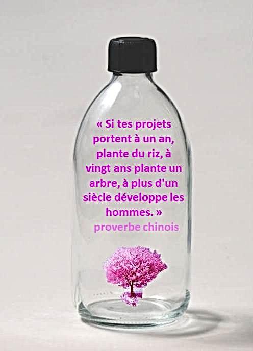 FLACON plante un arbre .jpg